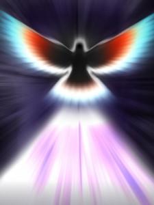 SOA dove symbol