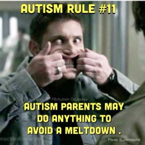 redirection for autism meltdown